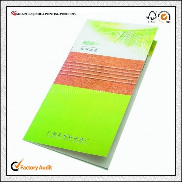 Factory Printing Professional High Quality Pamphlet Printing